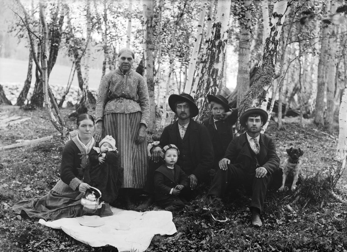 Flere generasjoner samlet til piknik i en bjørkeskog.