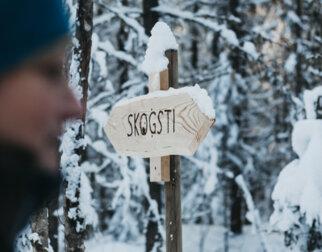 Skilt i snøen med tittelen Skogsti.