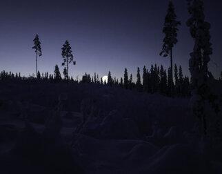Vinternatt i skogen med fullmåne.