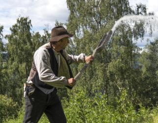 Bonden på friluftsmuseet Maihaugen på Lillehammer vanner åkeren på gammeldags vis med å slenge vann utover med en slags spade.