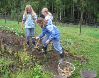 Barn i poetetåkeren på Maihaugen, Lillehammer
