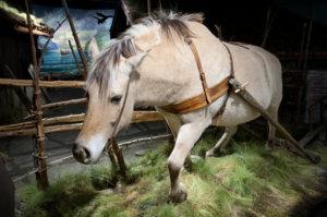 Hest i utstillingen Langsomt ble landet vårt eget som vises på Maihaugen på Lillehammer.