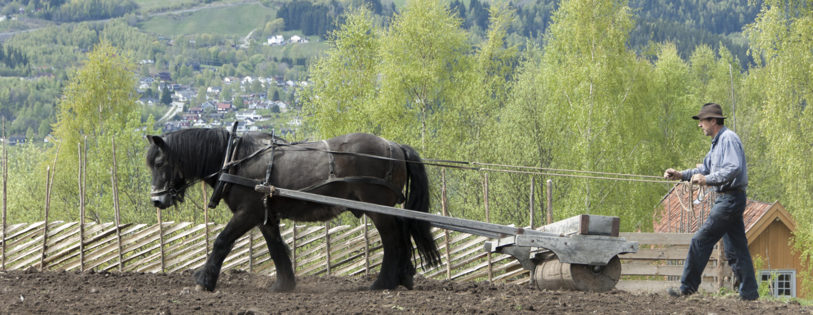 Bonden pølyer på gamle måten med hest på Maihaugen, Lillehammer