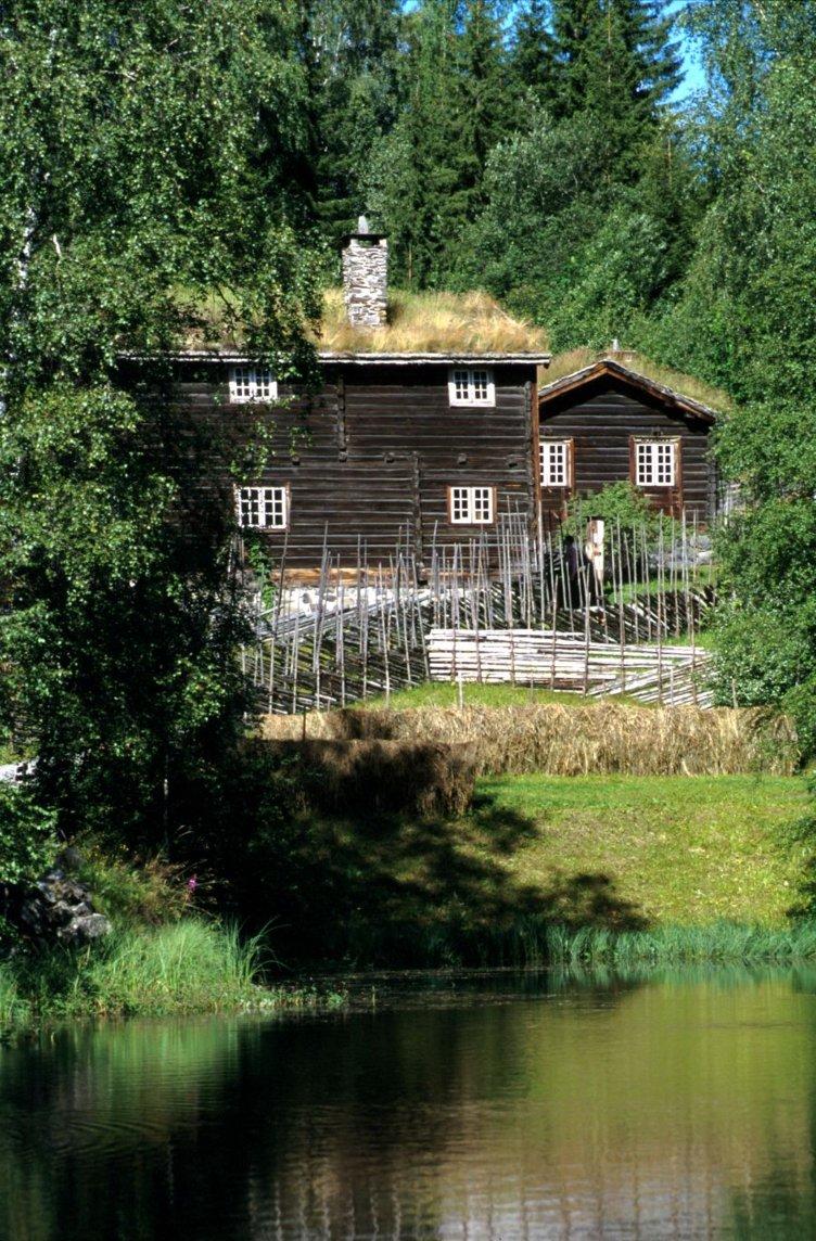 Sommer på Øygarden, en av gardene i friluftsmuseet Maihaugen på Lillehammer.